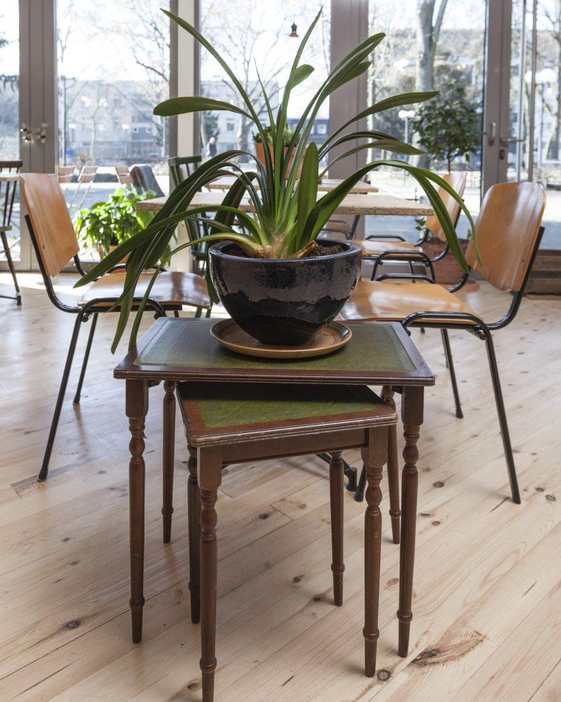 Grüner Salon am Nordmarkt | Euer kleiner, grüner Bungalow mit ...